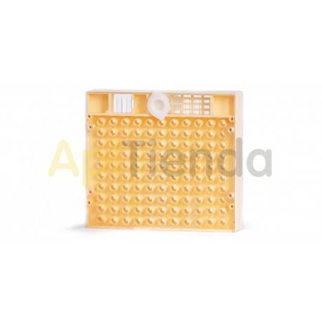 Reinas Cupularve Nicot Es una placa con 110 celdas cubierta por una tapa excluidora de reina. También lleva una tapa de cierre d