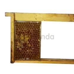 Miel en panal en una caja transportable