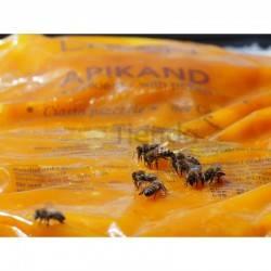 Alimento APIKAND con polen 1kg (Caja 20kg)