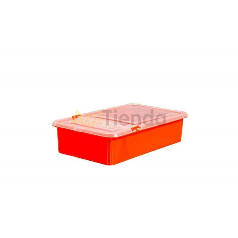 Alimentacion Alimentador Combo 0,8 L Alimentador con capacidad de 0.8L Dimensiones: Longitud 24,3 cm Ancho 14,3 cm Altura 5,