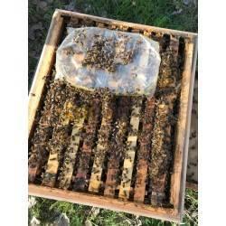Alimentacion Alimento Ambrosia Palet (800 kg) Alimento para abejas de fácil conservación y muy valorado por los apicultores. Fó