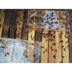Alimento Beecomplet Otoño